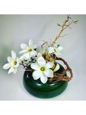 Magnolias blanc
