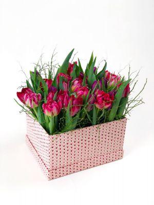 boîte remplie de tulipes labélisées Genève Région Terre Avenir