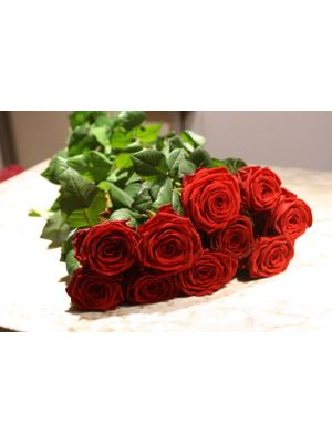 12 rose 'Red Naomi' 60cm - Fleuriot