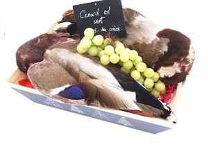 Canard sauvage en plume - 400g