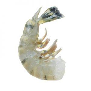 Crevettes Entières Crues Black Tiger 16/20