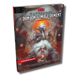 Dungeons and Dragons 5: Le Donjon du Mage Dément