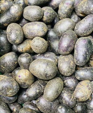 Pommes-de-terre Vitelotte