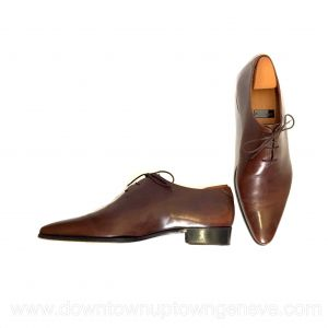 Berluti shoes in brown leather with shoe trees (embauchoires)