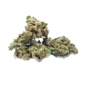 Geneva Haze Queen  Bio  Indoor <1%THC / 20%CBD