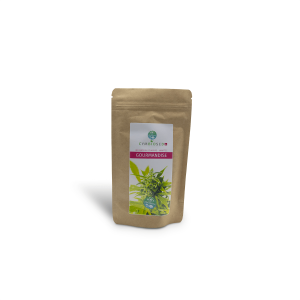 Infusion CYMBIOSED GOURMANDISE 50 gr