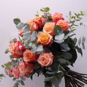 Rose 50 cm Pêche