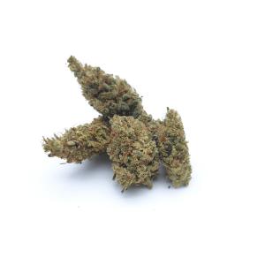 Lemon Indoor <1%THC / 18%CBD - 5gr