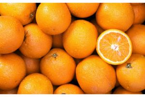 Orange à jus blonde
