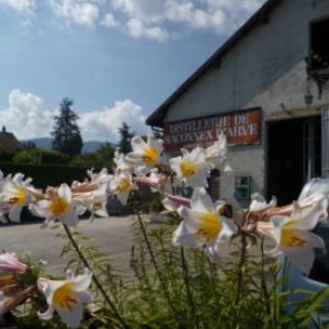 Distillerie de Saconnex-d'Arve Bon Genève Terroir -20%